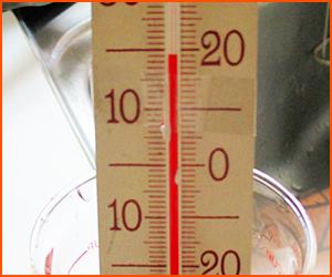 金魚の適温と水質管理